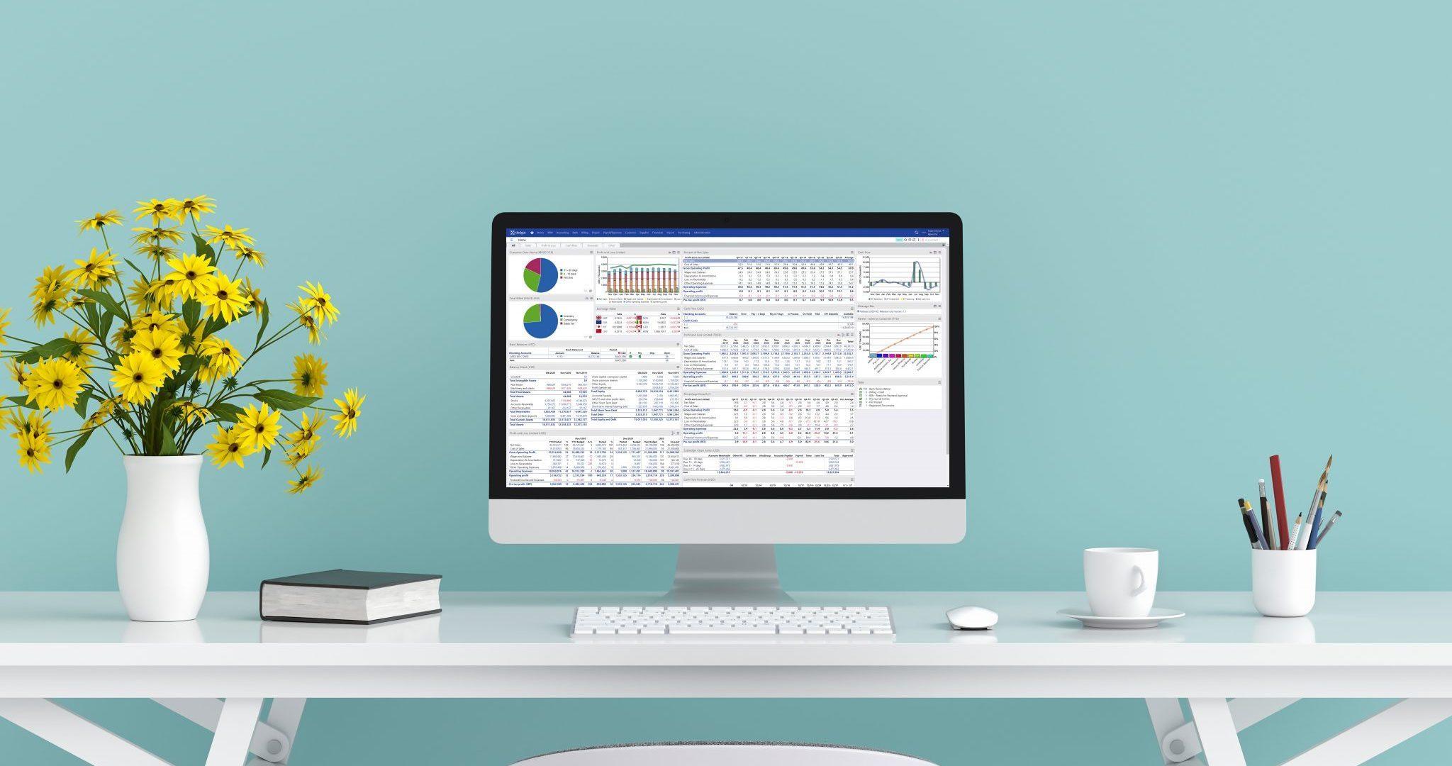Xledger Insight BI Tools